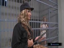 سكس إغتصاب داخل السجون